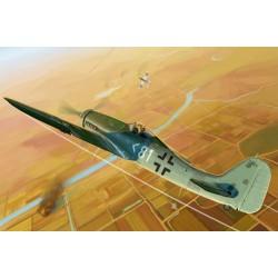 HBO81718 Focke-Wulf FW190D-11 1/48