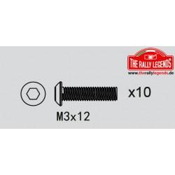 EZRL2274 Vis - tête ronde - M3 x 12mm (10 pcs)