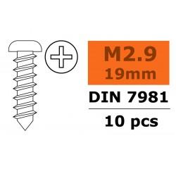 GF-0175-005 Vis à tôle tête bombée - 2,9X19mm - Acier galvanisée - 10 pcs
