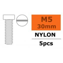 GF-0310-013 Vis à tête cylindrique - M5X30 - Nylon - 5 pcs