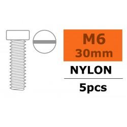 GF-0310-014 Vis à tête cylindrique - M6X30 - Nylon - 5 pcs