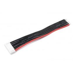 GF-1410-005 Connecteur d'équilibrage - Male - 6S-XH avec cble - 10cm - cble silicone 22AWG - 1 pc