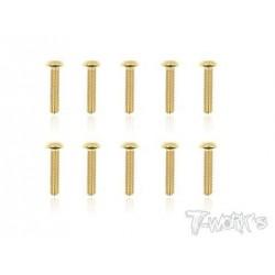 TGSS-314B Vis acier nitride Gold 3x14 mm bombées (10)