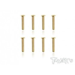 TGSS-316B Vis acier nitride Gold 3x16 mm bombées (8)