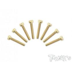 TGSS-320C Vis acier nitride Gold 3x20 mm cylindriques (8)