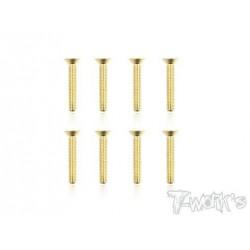 TGSS-320F Vis acier nitride Gold 3x20 mm fraisées (8)