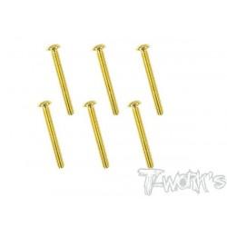 TGSS-325B Vis acier nitride Gold 3x25 mm bombées (6)
