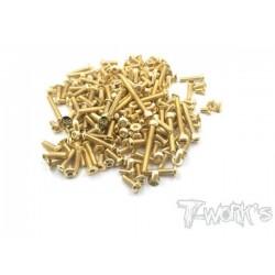 TGSS-EB484 Kit de vis Nitride Gold complet pour Tekno EB48.4 (151)