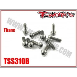 TSS310B Vis titane 3x10 tête bombée (10)
