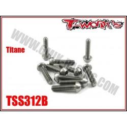 TSS312B Vis titane 3x12 tête bombée (10)