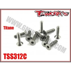 TSS312C Vis titane 3x12 tête fraisée (10)