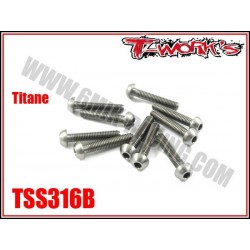 TSS316B Vis titane 3x16 tête bombée (10)