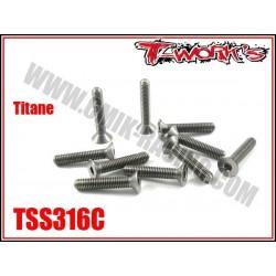TSS316C Vis titane 3x16 tête fraisée (10)