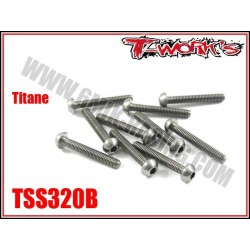 TSS320B Vis titane 3x20 tête bombée (10)