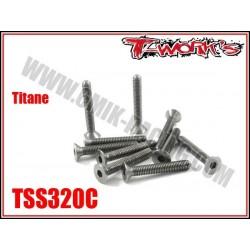 TSS320C Vis titane 3x20 tête fraisée (10)