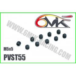 PVST55 Vis acier sans tête M5x5 (10 pcs)