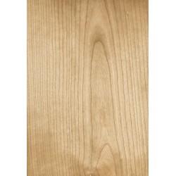 FLEXME Bois de placage 0.6mm MERIS.20x40cm