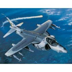 TRU02285 TRUMPETER AV-8B Harrier II 1/32