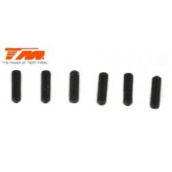 TM126310S Vis sans tête - M3 x 10mm (6 pces)