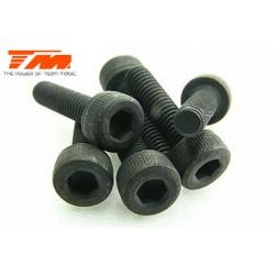 TM126312C Vis - tête cylindrique - Hex (Allen) - M3 x 12mm (6 pces)