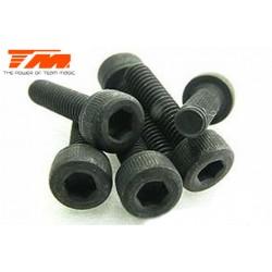 TM126314C Vis - tête cylindrique - Hex (Allen) - M3 x 14mm (6 pces)