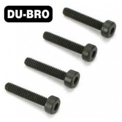 DUB2113 Screws - 2mm x 10 Socket Head Cap Screw (4 pcs per package)