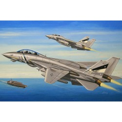 HBO80278 F-14D Super Tomcat 1/72
