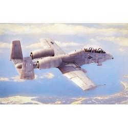 HBO80324 N/AW A-10A Thunderbolt II 1/48