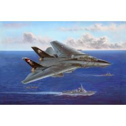 HBO80367 F-14B Tomcat 1/48