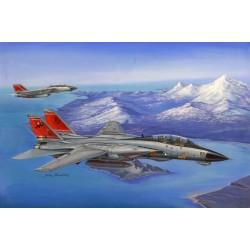 HBO80368 F-14D Super Tomcat 1/48