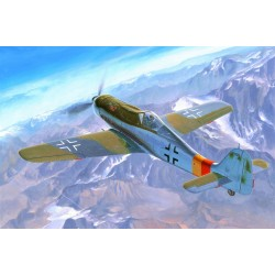 HBO81716 Focke Wulf FW190D9 1/48