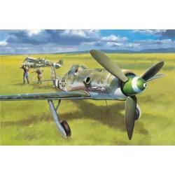 HBO81721 Focke-Wulf FW190D-13 1/48