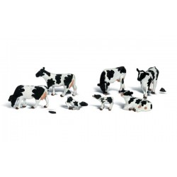 WLS-A1863 HO Holstein Cows