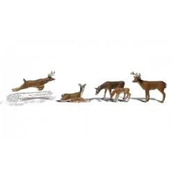 WLS-A1884 HO Deer