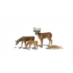 WLS-A2543 BUCK AND FAMILY G