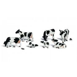 WLS-A2724 HOLSTEIN COWS O