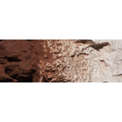 WLS-C1222 BURNT UMBER