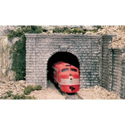 WLS-C1267 TUNNEL PORT CUT STONE O