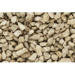 WLS-C1272 COARSE BUFF