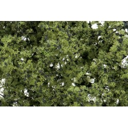 WLS-F1128 Arbustes et jeunes plants vert clair