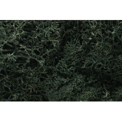 WLS-L164 DARK GREEN LICHEN