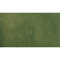"WLS-RG5172 GREEN GRASS 25""X33"""