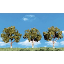 WLS-SP4149 Large Deciduous Trees