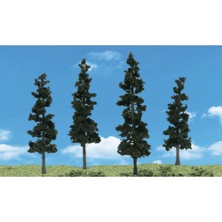 WLS-SP4151 CONIFER TREES