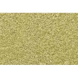 WLS-T43 TURF YELLOW GRASS