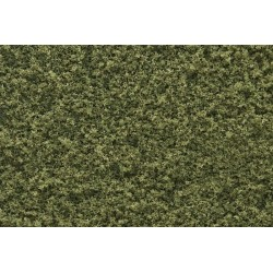 WLS-T44 TURF BURNT GRASS