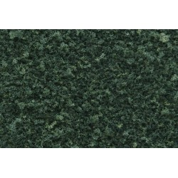 WLS-T65 DARK GREEN