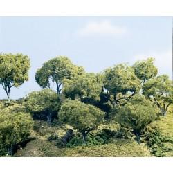 "WLS-TK25 5,5""-6,5"" HARDWOOD TREES3"