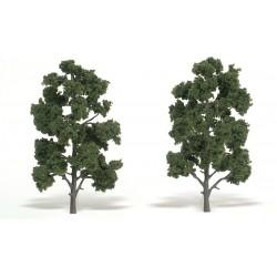 """WLS-TR1519 TREE MED.GREEN 8""""-9"""""""