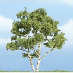 "WLS-TR1601 PREMIUM TREES BIRCH 4"" 1"